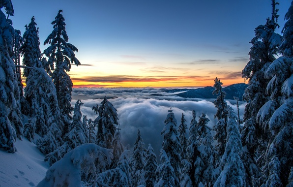 Picture winter, forest, clouds, snow, trees, sunset, mountains, ate, Canada, Vancouver, Canada, British Columbia, Vancouver, British ...