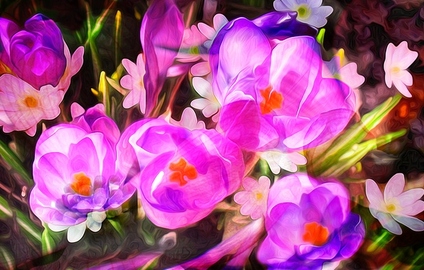 Picture line, flowers, paint, petals, garden