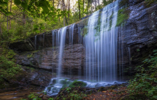 Picture forest, water, nature, rock, waterfall