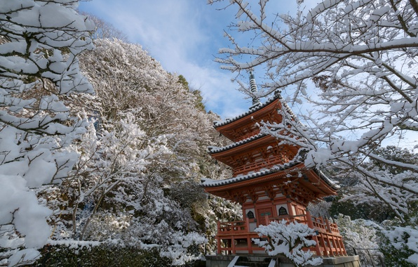 Picture winter, snow, trees, branches, Japan, temple, pagoda, Japan, Kyoto, Kyoto, Mimuroto-ji Temple