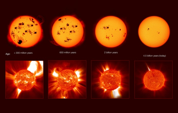 Picture life, death, The sun, crown, spot, beginning, the end, activity, prominences