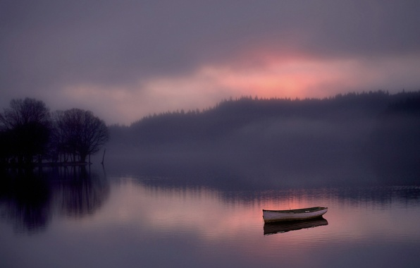 Picture forest, fog, lake, dawn, boat
