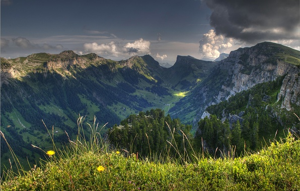 Picture the sky, grass, clouds, trees, flowers, mountains, clouds, nature, valley, Switzerland, switzerland