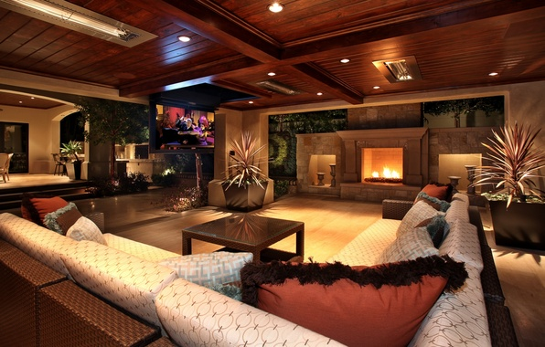 Picture lights, sofa, tree, furniture, TV, fireplace, Interior, vases
