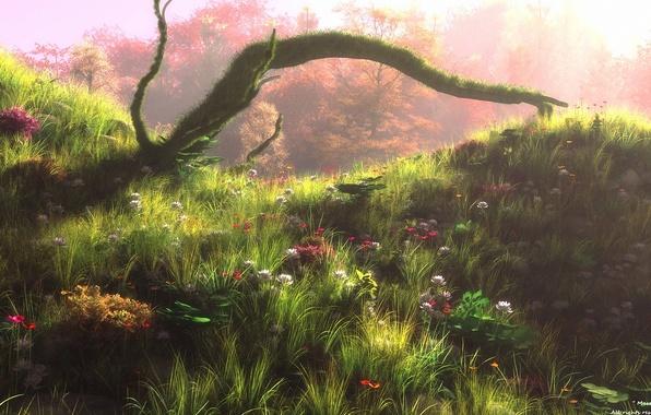 Picture forest, flowers, art, painted landscape