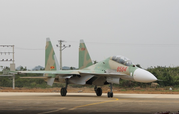 Picture fighter, the airfield, Vietnam, multipurpose, Su-30