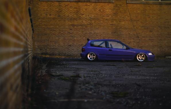 Picture profile, Purple, Honda Civic, civici, stance. Honda