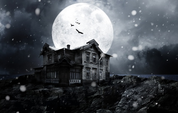 Picture snow, night, the moon, dark, dark, moon, horror, horror, moonlight, bats, night, snow, midnight, moonlight, …