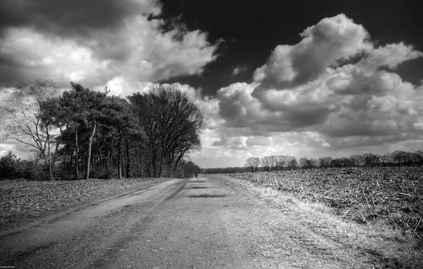 Picture black and white, Clouds, Field, Road