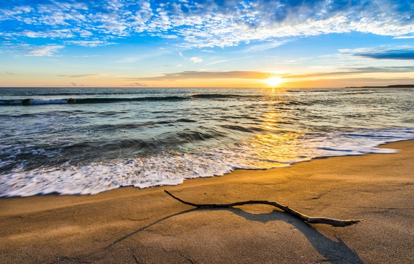 Picture sand, sea, wave, the sky, clouds, landscape, branch