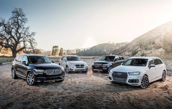 Picture Audi, BMW, Volvo, BMW, Range Rover, XC90, Volvo, Sport, crossover, range Rover, Audi Q7