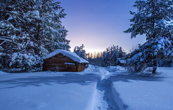 Picture winter, snow, night, trail, houses