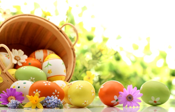 Picture flowers, holiday, basket, eggs, spring, Easter, lavender, daffodils, Easter, kosmeya, Easter