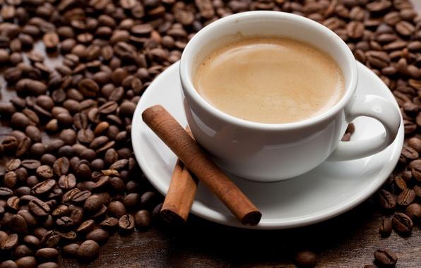 Picture foam, coffee, grain, sticks, Cup, drink, cinnamon, saucer