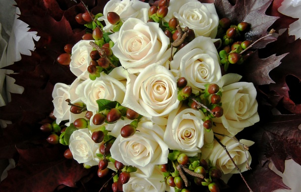 Picture white, flowers, photo, roses, bouquet