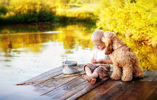 Picture summer, water, childhood, river, fishing, dog, fisherman, boy, bucket, friends, rod, Spaniel