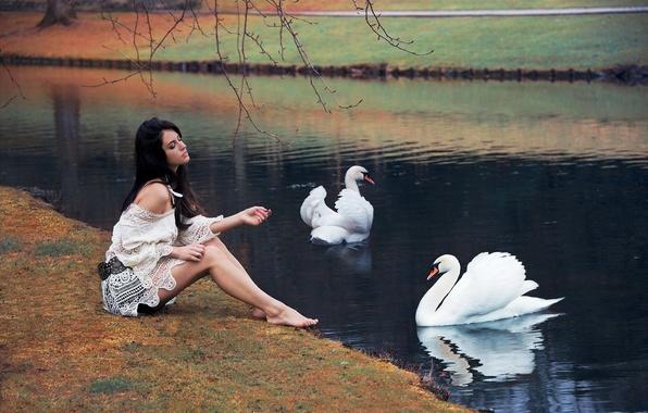 Picture girl, pose, lake, Park, reflection, mood, sweetheart, model, dress, brunette, legs, beautiful, swans, chic, Aurela …