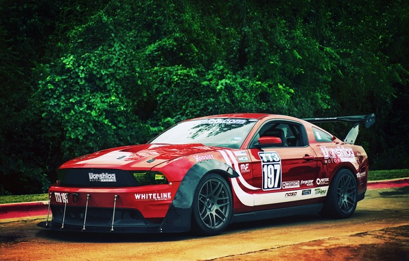 Picture Mustang, Ford, red, front, race car, kit