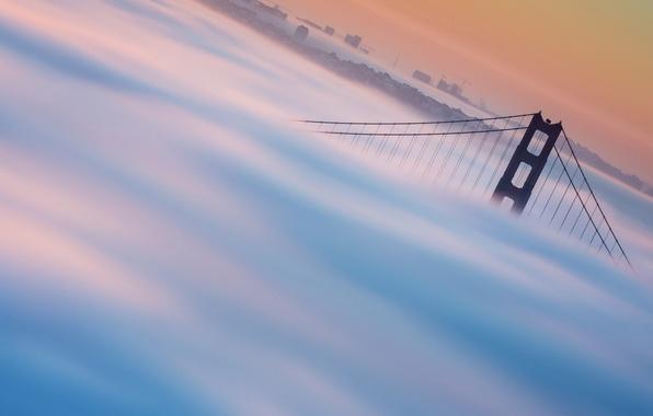 Picture fog, cityscape, golden gate bridge