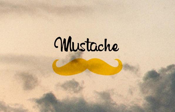 Picture minimalism, art, mustache, movember