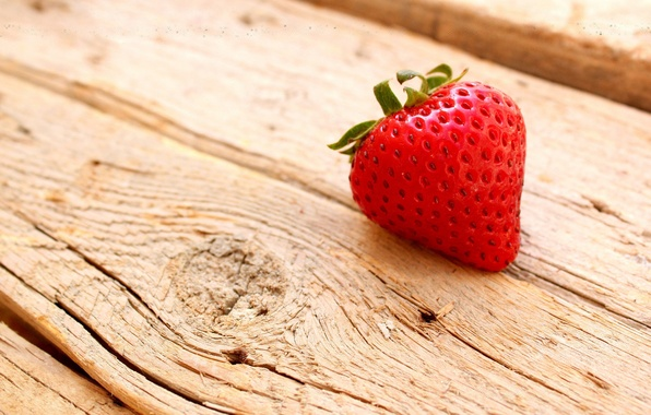 Picture macro, tree, strawberry, berry, wooden, Board