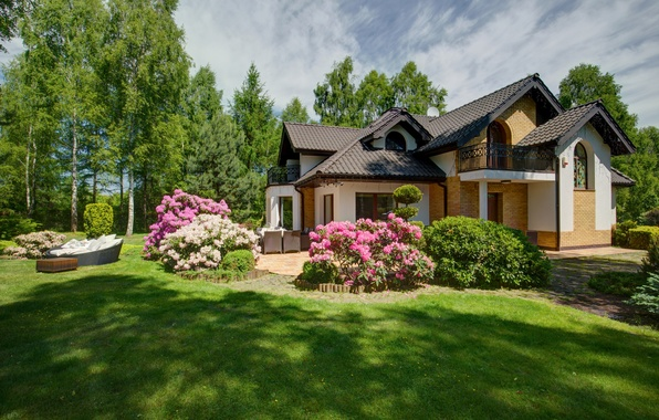 Picture greens, summer, grass, the sun, trees, flowers, house, lawn, garden, the bushes
