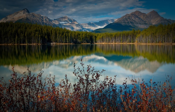 Picture FOREST, NATURE, MOUNTAINS, The SKY, CLOUDS, TOPS, POND, TREES, BEAUTY, POND, LAKE, PURITY, RASTITELNOSTI