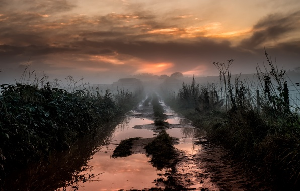 Picture road, fog, puddle