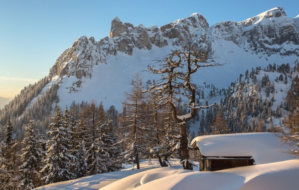 Picture winter, forest, snow, mountains, Austria, Alps, house, Torsten Muehlbacher photography