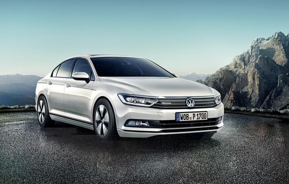 Picture Volkswagen, Volkswagen, Passat, Passat, 2015, BlueMotion