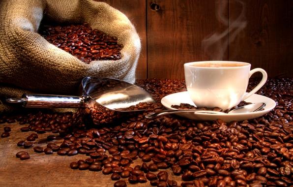 Picture coffee, hot, grain, spoon, Cup, drink, bag, saucer, scoop