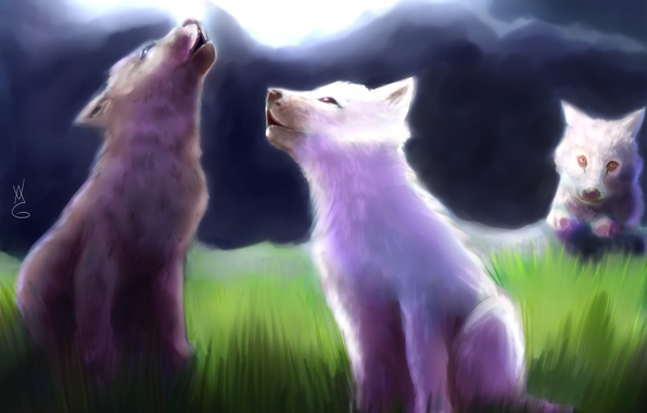 Picture grass, art, wolves, the cubs
