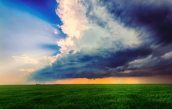 Picture field, summer, the sky, clouds, clouds