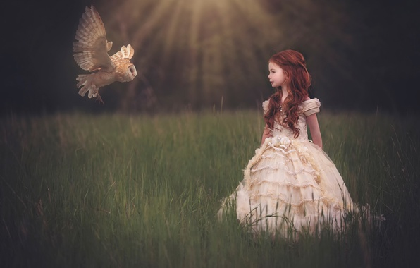Picture owl, dress, girl, flight