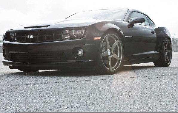 Picture black, Chevrolet, Camaro, Chevrolet, muscle car, black, Blik, Camaro