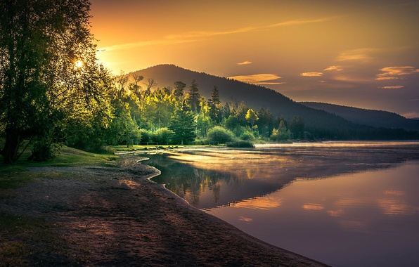 Picture forest, the sun, trees, mountains, lake, dawn, shore, morning