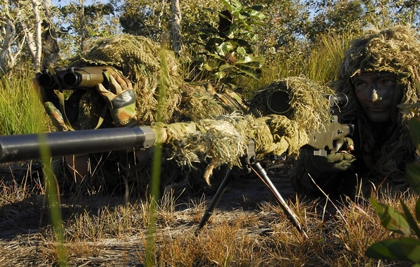 Picture grass, trees, vegetation, soldiers, disguise, equipment, firing position, sniper