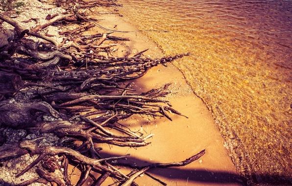 Picture The sun, Water, Sand, Nature, Beach, Tree, Pier, Chain, Stones, Russia, Kazan, Surface