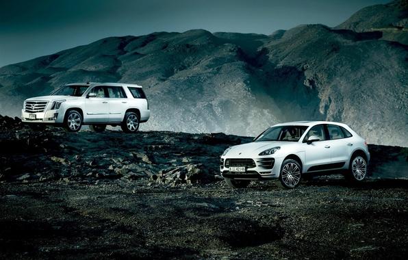 Picture Cadillac, Porsche, Escalade, Landscape, Mountain, White, SUV, Village, Macan