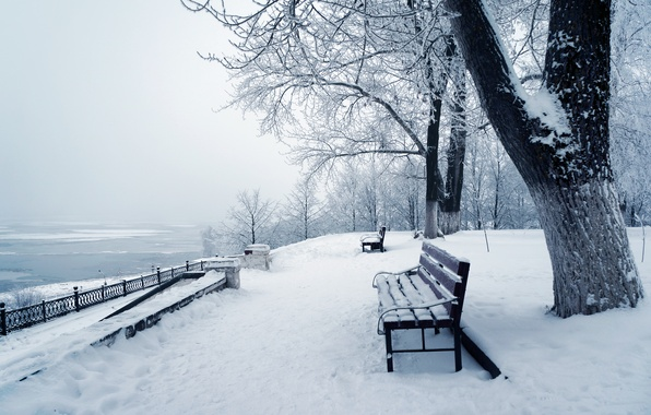 Picture winter, snow, trees, nature, Park, nature, winter, snow, tree