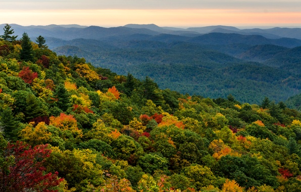 Picture forest, the sky, trees, sunset, orange, hills, view, height, the evening, Autumn, haze