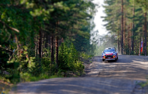Picture Trees, Forest, Speed, Race, Citroen, DS3, WRC, Rally, Flies, tilt- shift