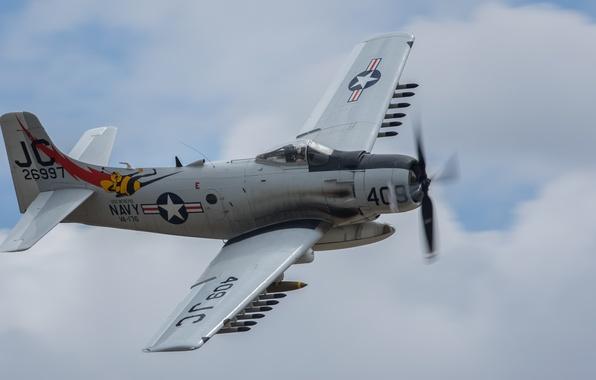 Picture flight, attack, Douglas, Skyraider, Skyraider