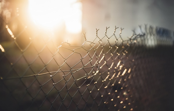 Picture light, background, the fence