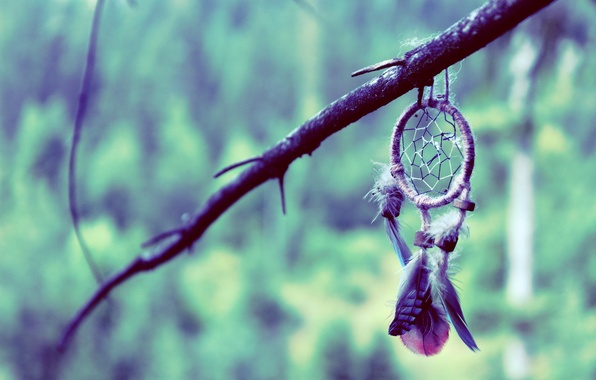 Picture background, branch, feathers, talisman, amulet, Dreamcatcher, Dreamcatcher