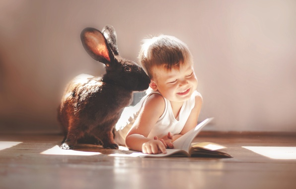Picture smile, mood, boy, rabbit, friends, owner, ear