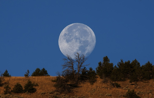 Picture moon, sky, blue, hill, countryside, full moon