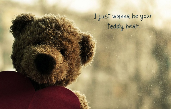 Picture sadness, love, heart, bear, bear, bear, plush, heart, bear, Teddy, teddy