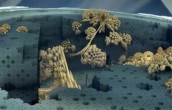 Picture background, form, fractal