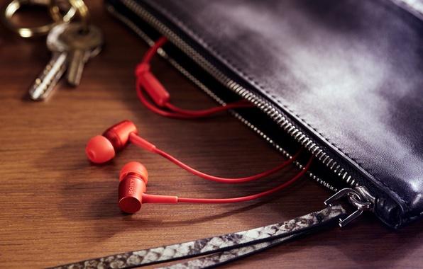 Picture macro, headphones, bag, sony h.earin